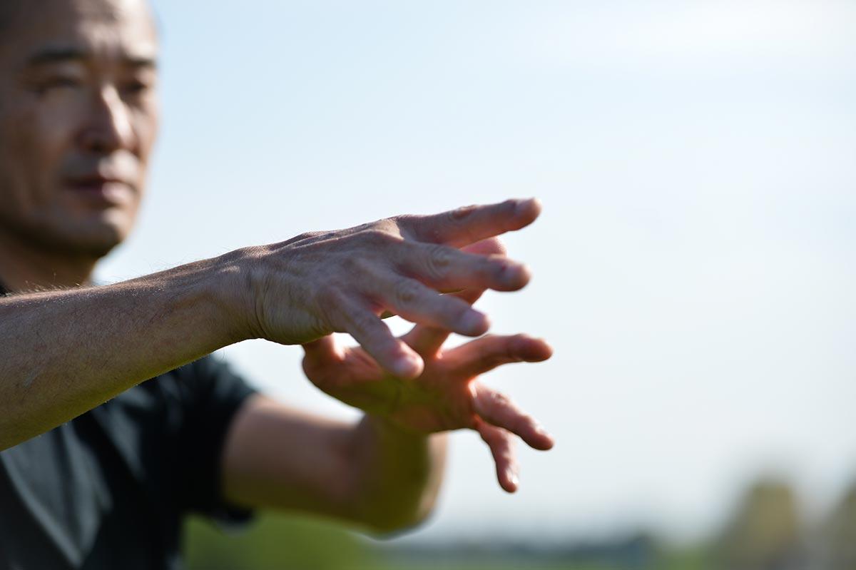 太気拳は実戦を重んじる武術です。実戦的、というのは型にとらわれず、相手がどのような動きをしたとしても自由に対応できるということです。